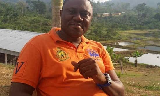 Cameroun: Ce que le fer de Mbalam pourrait apporter à l'économie camerounaise