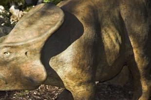 Une reconstitution d'un protocératops au zoo préhistorique de l'Aven Marzal, à Saint-Remèze (Ardèche), le 19 février 2007. (LEEMAGE / AFP)
