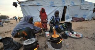 Des femmes dans un camp de réfugiés au Nigeria, le 26 janvier 2015. © SIA KAMBOU / AFP