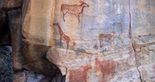 Peintures rupestres dans les Tsodilo Hills au Botswana. Ce site est classé au Patrimoine mondial de l'Unesco. © AFP - ROBERT HARDING PREMIUM - ROBERTHARDING - PATRICK DIEUDONNE