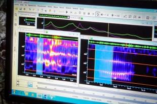 © HO / AFP Diffusée jeudi 26 octobre, l'émission de télévision a montré comment sont analysées les « attaques acoustiques