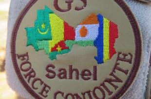 Cinq pays sont engagés dans la force conjointe du G5 Sahel. © RFI/Olivier Fourt