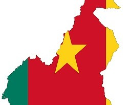 carte-drapeaux-cameroun_modif