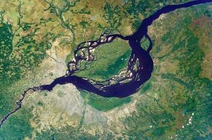 La tourbière du Bassin du Congo constitue la plus importante des tropiques et regroupe 30% du dioxyde de carbone des tourbières tropicales.
