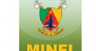 Ministère des finance camerounais