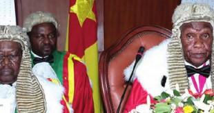 Conseil constitutionnel camerounais
