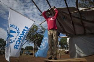 Un réfugié aide à monter une tente du HCR au Cameroun. (HCR-Cameroun)