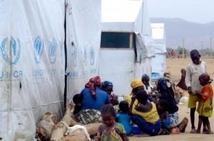 Réfugiés à Minawao. Crédit photo : Journal du Cameroun