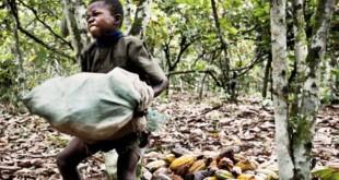 L'exploitation du travail des enfants au Cameroun