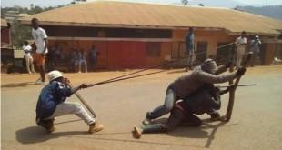 Combat des séparatistes anglophones au Cameroun