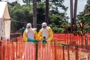 L'épidémie d'Ebola en RDC serait en passe d'être vaincue. © AFP Photo/Junior D. Kannah