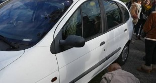 Arbre Pousse Dans Auto